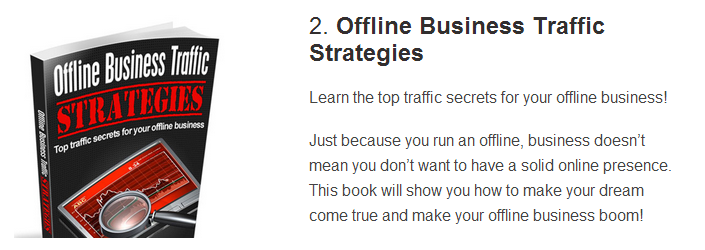 Instant Offline Presence Bonus #2 - Offline Business Strategies.
